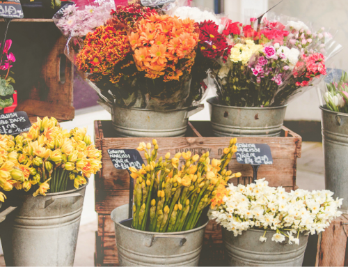 April Showers bring May Flowers… and how to find the perfect ones!